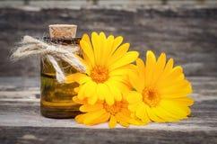 Calendula flower essential oil. Naturopathy. Herbal medicine stock photos