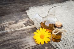 Calendula flower essential oil. Naturopathy. Herbal medicine royalty free stock images