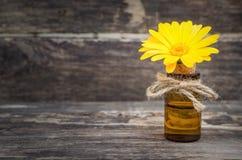 Calendula flower essential oil. Naturopathy. Herbal medicine stock photo