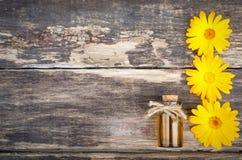 Calendula flower essential oil. Naturopathy. Herbal medicine royalty free stock image