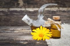 Calendula flower essential oil. Naturopathy. Herbal medicine royalty free stock photo