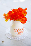 Calendula Flowers. In a vase Stock Photography