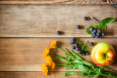Calendula flowers, aronia berries (black chokeberry) and apple on wooden background in rustic style Stock Images