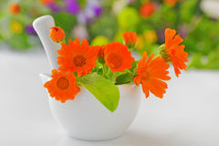 Calendula flowers and  mortar Stock Photo