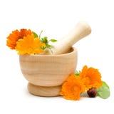 Calendula flowers, mortar and pestle royalty free stock photos