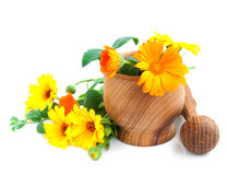 Calendula flowers and mortar Royalty Free Stock Images