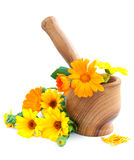 Calendula flowers and mortar Royalty Free Stock Photography