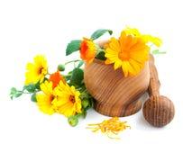 Calendula flowers and mortar Stock Photo