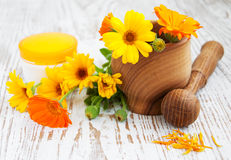 Calendula flowers and mortar Royalty Free Stock Photo