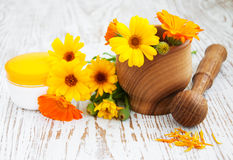 Calendula flowers and mortar Stock Images