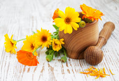 Calendula flowers and mortar Stock Photos