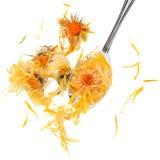 Calendula Flowers Royalty Free Stock Images
