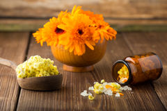 Calendula homeopathic. Royalty Free Stock Photography