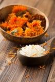 Calendula homeopathic. Stock Images