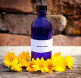 Calendula oil Royalty Free Stock Images
