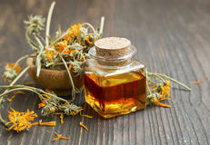 Calendula oil. Bottle with dried flowers Stock Photo