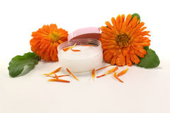 Calendula Ointment Royalty Free Stock Images
