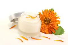 Calendula ointment with flowers Royalty Free Stock Images