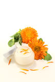 Calendula ointment with flowers and petals Stock Images
