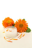 Calendula ointment with petals Royalty Free Stock Image