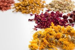 Calendula and other dried herbs on a white background royalty free stock images