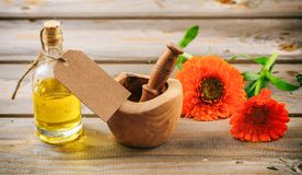 Calendula essential oil and fresh blooming twig in a mortar, wooden table, blank tag, copy space. Calendula or pot marigold essential oil and fresh blooming twig Stock Photos