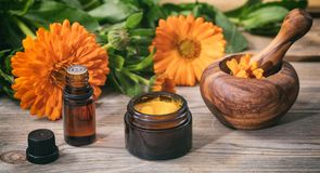 Calendula essential oil, ointment and a mortar on a wooden table, fresh blooming calendula background,. Calendula products. Essential oil, ointment and a mortar Royalty Free Stock Image