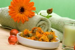 Calendula spa set Royalty Free Stock Image