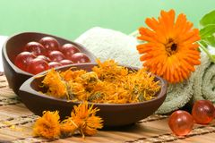Calendula spa set Stock Image