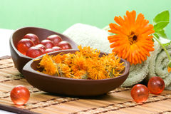 Calendula spa set Royalty Free Stock Photo