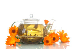 Calendula tea Stock Image
