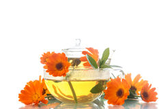 Calendula tea Royalty Free Stock Image