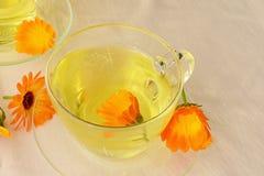 Calendula tea and flowers. Calendula tea in glass cups and marigold flowers stock image