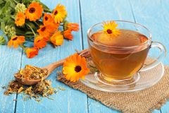 Calendula tea with fresh and dried flowers on blue wooden background Stock Photos