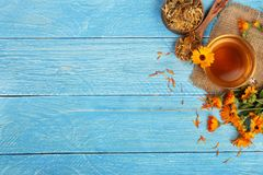 Calendula tea with fresh and dried flowers on blue wooden background with copy space for your text. Top view royalty free stock photography