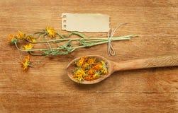 Calendula torkade örtar Växt- medicin, phytotherapy medicinskt fotografering för bildbyråer