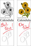 Calendula - Two Price Tags. For florist shop Stock Images