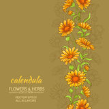Calendula vector background. Calendula flowers vector pattern on color background Royalty Free Stock Images