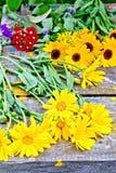 Calendula yellow on older boards Royalty Free Stock Image