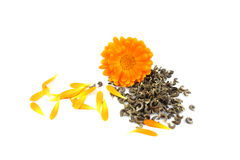 Calendulabloem, goudsbloem, zaden Royalty-vrije Stock Afbeelding