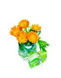 Calendulaen blommar i en exponeringsglas- och gräsplangåvatvål av på en vit Arkivfoton