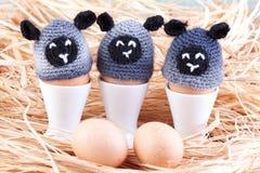 Calentadores del huevo de las ovejas Imagenes de archivo