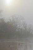 Calentamiento de la primavera Imagenes de archivo