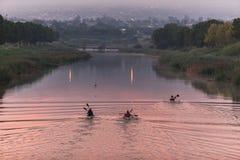 Calentamiento de la raza de la canoa de los Paddlers Foto de archivo libre de regalías