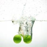 Cales frescas Foto de archivo libre de regalías