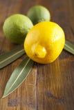 Cales y limón Fotografía de archivo
