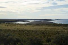 Caleta Valdes - Patagonia Fotos de Stock