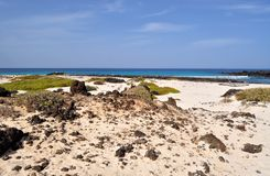 caleton在西班牙用增白剂擦在兰萨罗特岛加那利群岛上的海滩视图 库存照片