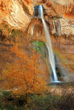 Calf Creek Falls. Stock Photography