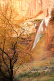 Calf Creek Falls. Royalty Free Stock Photography